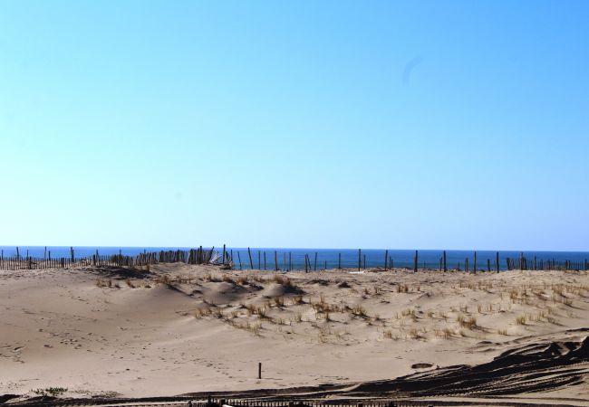 Ferienwohnung in Biscarrosse - 132 - 4 RESIDENCE LES OCEANIDES